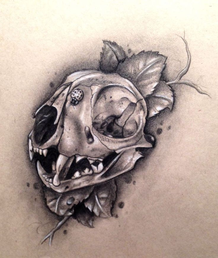 Animal skull tattoo idea. What about something like this ...