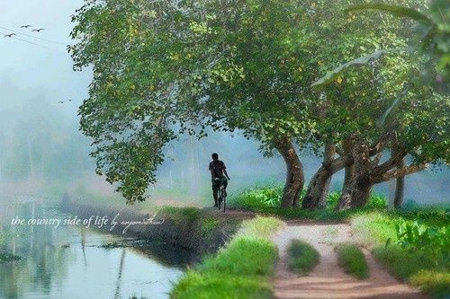 17 picturesque village photos from kerala paradise