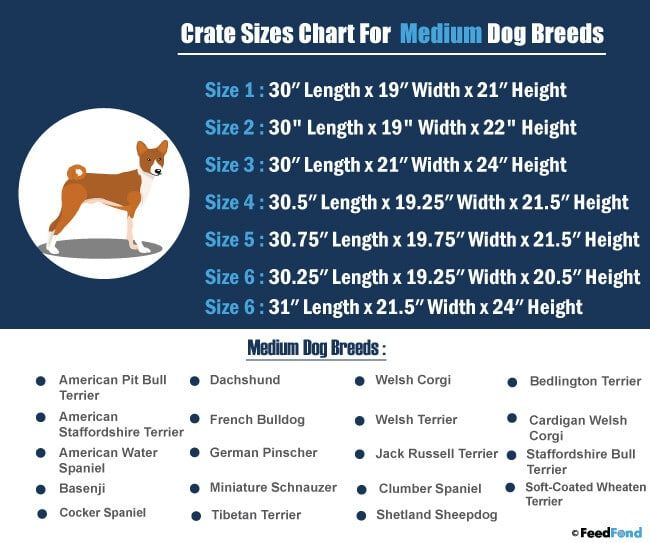 7 Best Heavy Duty Dog Crate In 2020 Heavy Duty Dog Crate Dog