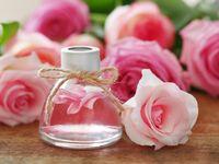 Růže jsou léčivé: Připravte si z květů čaj, sirup, pleťový olej
