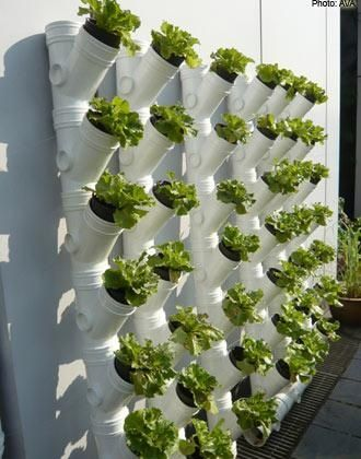 Could spray pait it matalic PVC pipes for growing veggies and herbs – www.soshiok.com/… An idea from Singapore AVA Collect the rainwater and self irrigate … Awesome