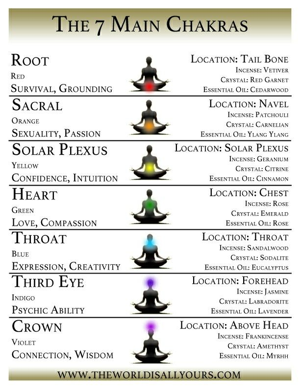 7 Main Chakras Contact Me If You Would Like To Schedule An Ointment For Any Reiki Pinterest Chakra Meditation And
