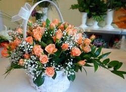 Kosz 50 róż herbacianych