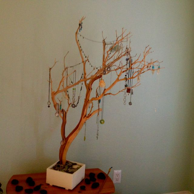 Tree branch jewelry holder things i want to do pinterest for Tree branch jewelry holder