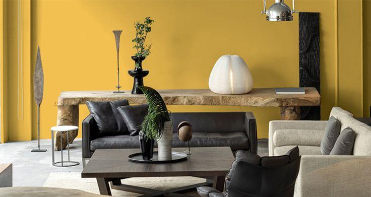 couleur ocre doré mur