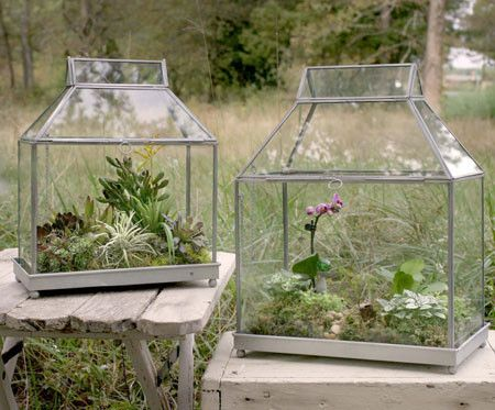 """Put your favorite plants inside these terrariums! Large measures 14¼"""" long, 8¼"""" deep and 18½"""" tall. Small measures 12¼"""" long, 7"""" deep and 15"""" tall."""