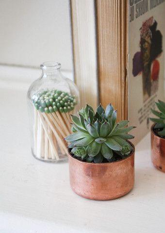 Mini copper planters, for my cacti! :)