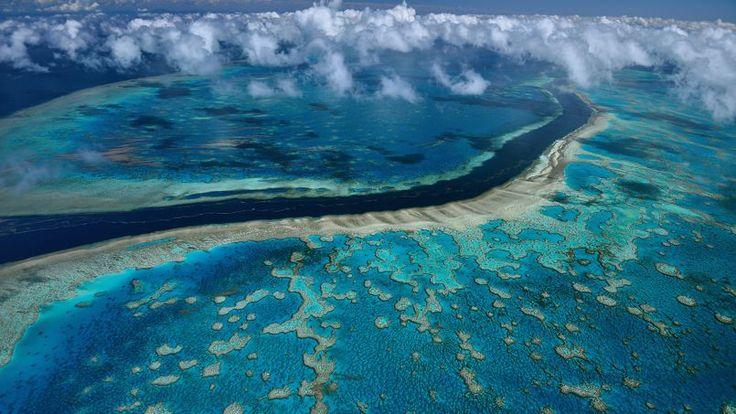 Paysage surréaliste à Hardy Reef au large des îles Whitsunday sur les côtes du Queensland en Australie.