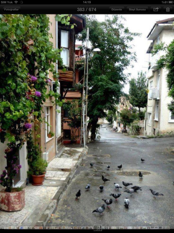Heybeliada Istanbul Turkey