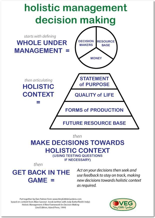 Holistic Management and VEG: Part One - Defining the Whole Under Management