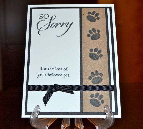 Sympathy Dog Quotes: Best 25+ Handmade Sympathy Cards Ideas On Pinterest