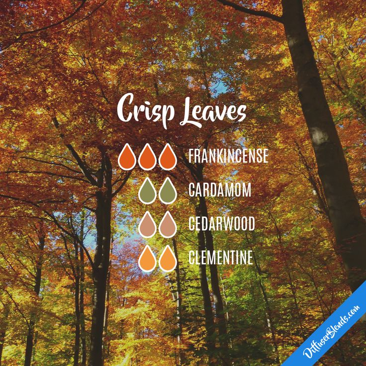 Crisp Leaves — Essential Oil Diffuser Blend