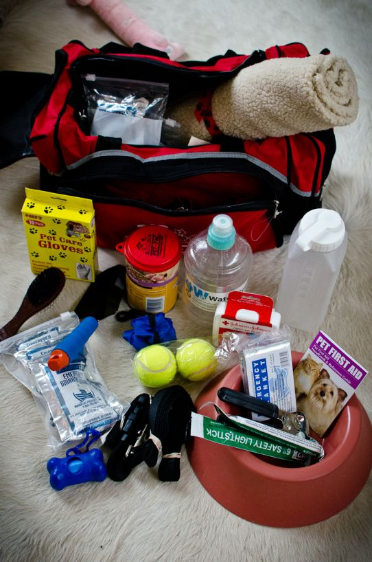 72 Hours Dog Emergency Survival Pack/I might change a few things, but this is a great basic!
