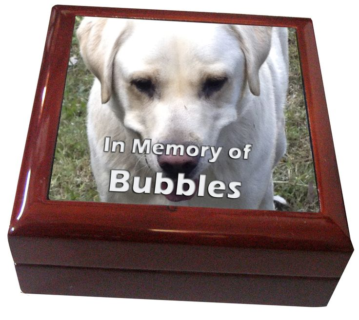 High polished Keepsake Box in memory of your special pet. http://jennoliart.com.au/promotional-products/keepsake-box/