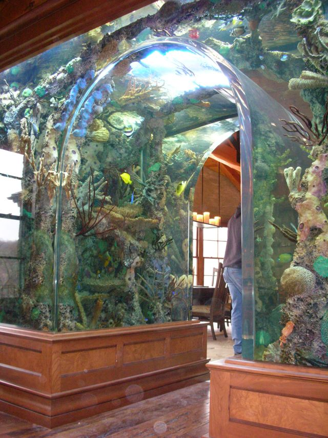 ive always wanted one of these in my dream home i love the candle chandelier peeking around the corner too - Fish Tank Designs My Home