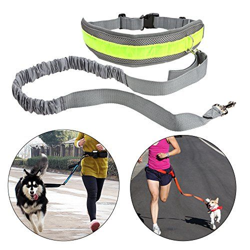 "Tuff Mutt Hands Free Dog Leash for Running, Walking, Hiking, Durable Dual-Handle Bungee Leash, Reflective Stitching, 4-Foot Long, Adjustable Waist Belt (Fits up to 42"" waist)"