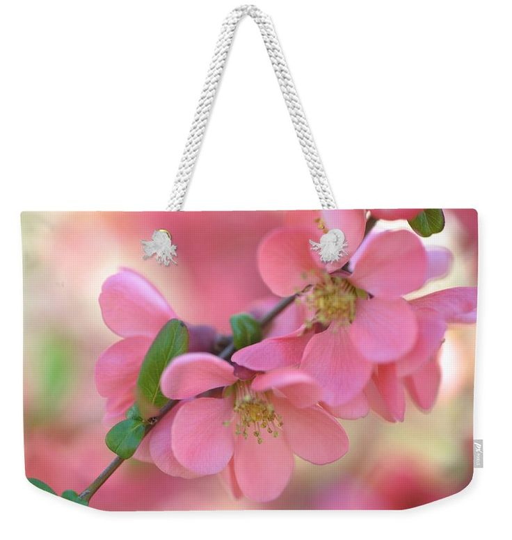 "Pink Spring Marvels Weekender Tote Bag (24"" x 16"") by Jenny Rainbow.  The tote bag includes cotton rope handle for easy carrying on your shoulder.  All totes are available for worldwide shipping and include a money-back guarantee."