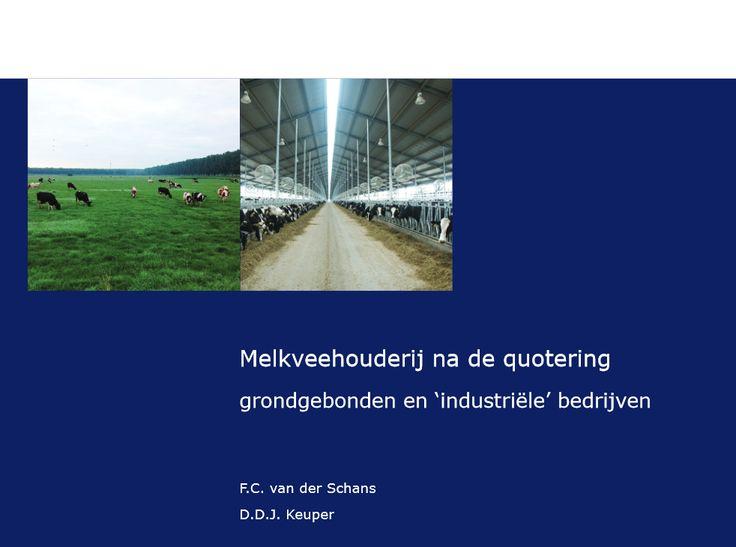 Rapport over #melkkoeien & Het leven van een melkkoe