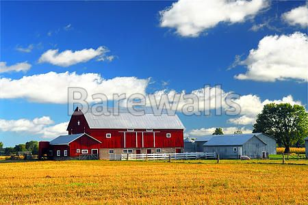 """""""Rural landscape with red barn"""" - Americana art prints available at Barewalls.com"""