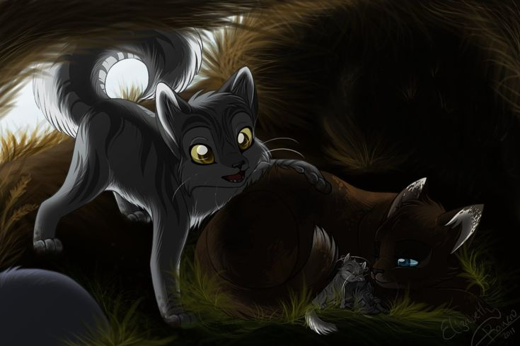 Graystripe checking on Featherkit and Stormkit in Riverclan