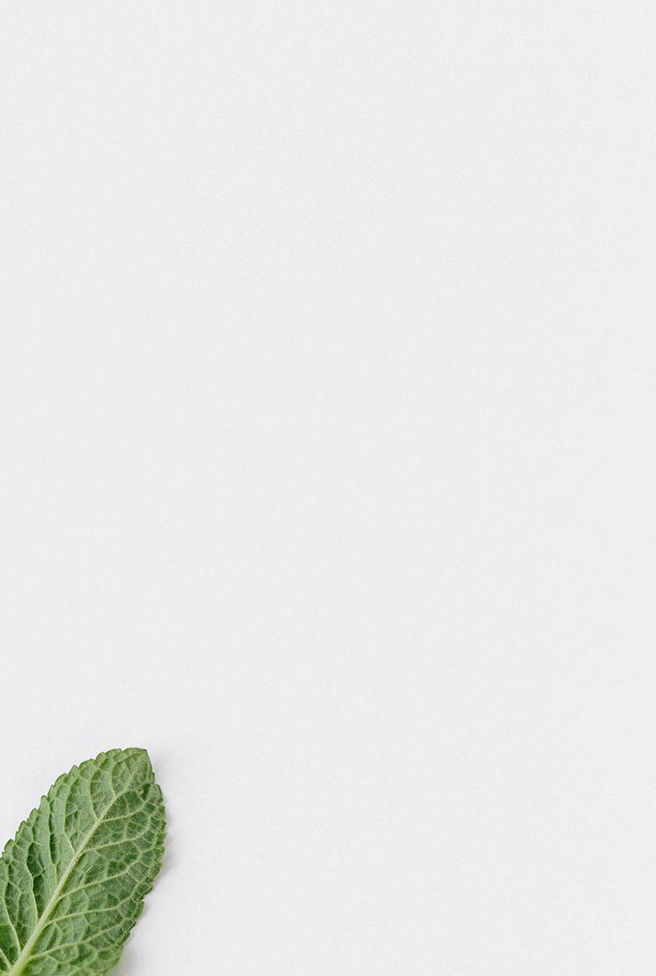 Ren Leaf Photography Minimal Photography Minimalist Photography