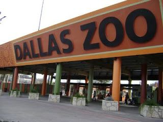 10 Best Tourist Attractions in Dallas:World Tourist Attractions