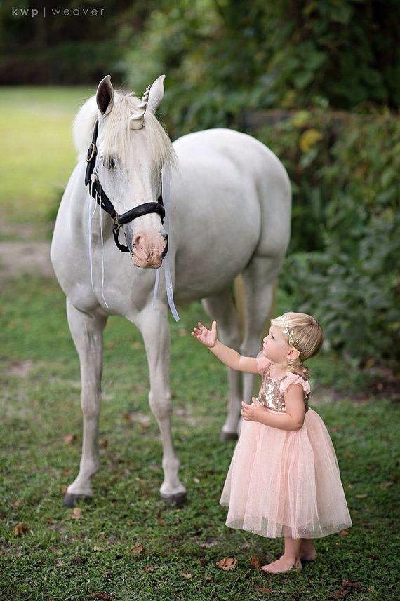Unicorn Horn for Horse or Pony: unicorn by TheUnicornCorner