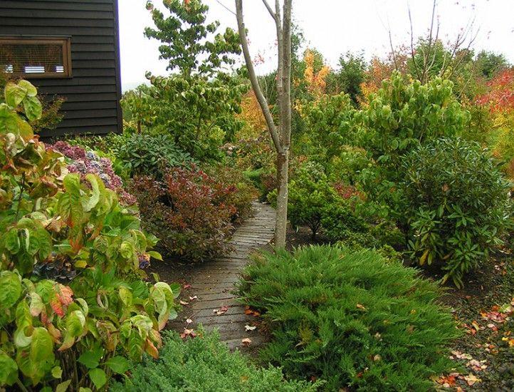 Jardin en Chiloe, CRISTOBAL ELGUETA