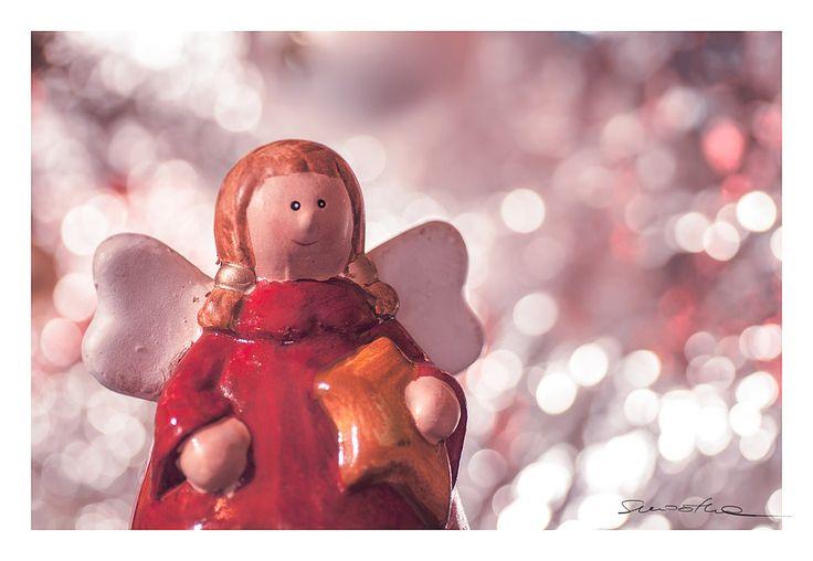 https://flic.kr/p/CkxfgY | Angel of Christmas. | Taken for Macro Mondays Group. Topic:the beauty of bokeh.