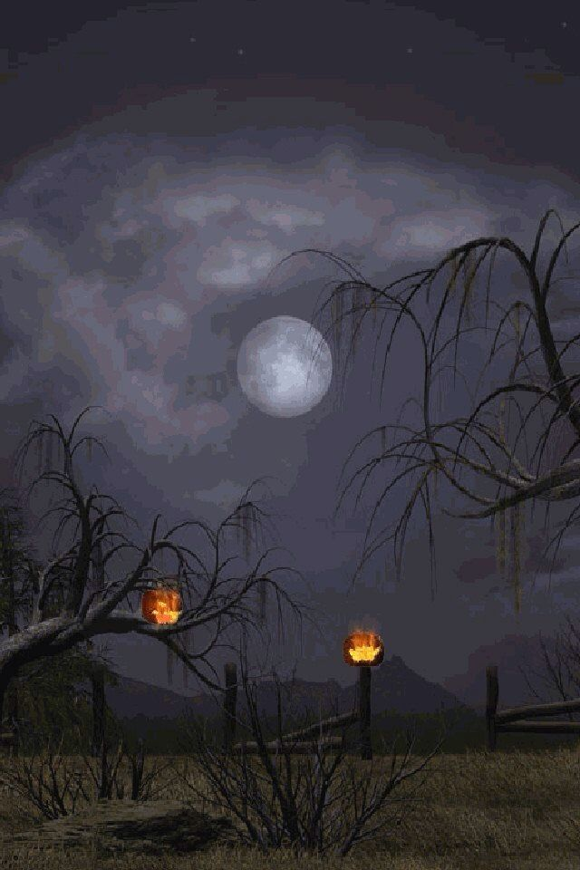 Upon Halloween night, such a creepy, eerie sight. Happy Halloween