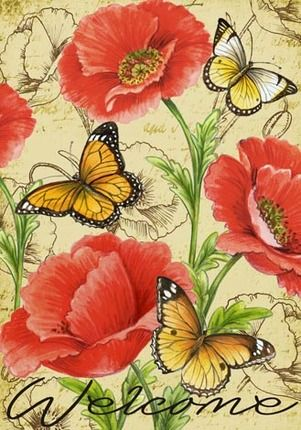 WELCOME........to the FRAGILE BEAUTY......of butterflies, dragonflies & moths