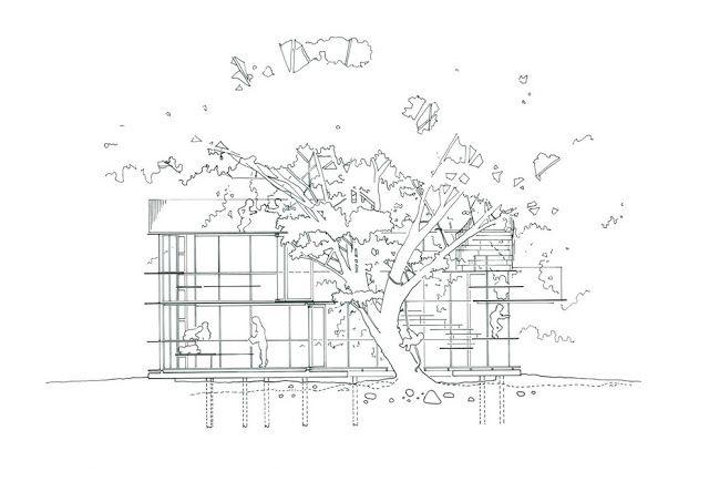 Kinder Garden: Ring Around A Tree / By Tezuka Architects