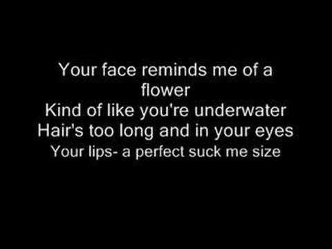 Liz Phair - Flower (with lyrics) - YouTube. NSFW by a country mile...