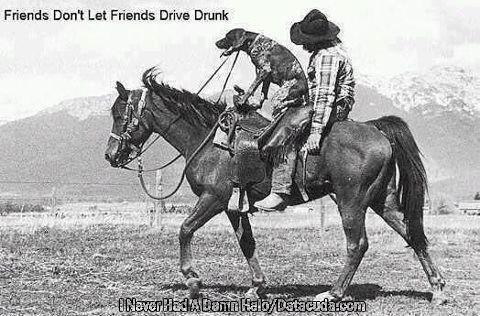 Drunk Rider 104