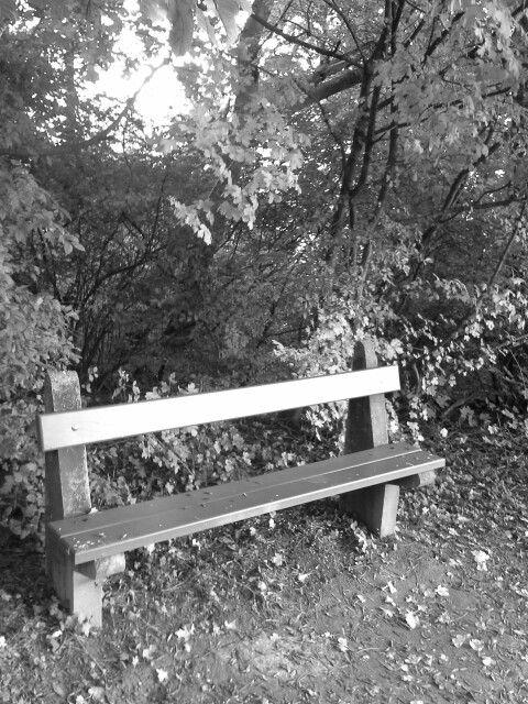 Pihenő,a levendula ültetvénnyel szemben.