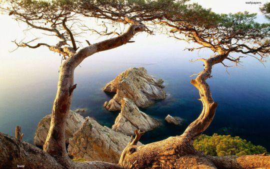 Sintonia , penisola calcidica