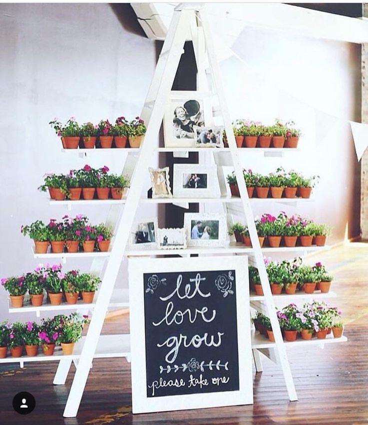 {#dicaQCQD} Linda ideia de lembrancinha: vasinhos com flores! ❤️ Deixe o amor crescer ❤️ www.quemcasaquerdicas.com  #lembrancinhas #lembrancinhacasamento #vasinhodeflores #flores #amor #casamento #noivos #quemcasaquerdicas