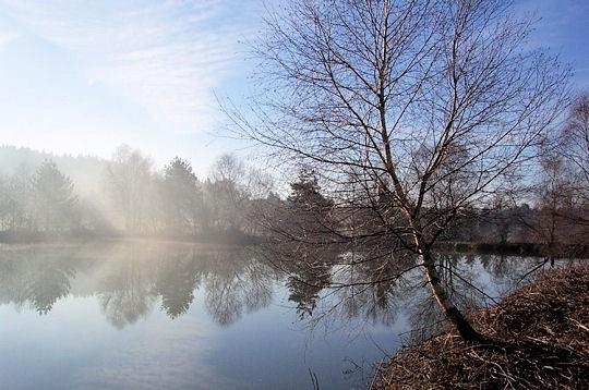 Le Parc naturel du Morvan (Bourgogne)  Le Morvan est un massif de moyenne altitude situé en Bourgogne. Depuis 1970, il est protégé par un Parc naturel régional. © Maryse Rozerot  http://www.linternaute.com/