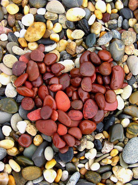 i left my heart at the shore….