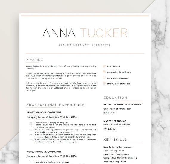 Resume Template Ms Word 7 Best Cv Images On Pinterest  Alphabet Cv Template And Modern