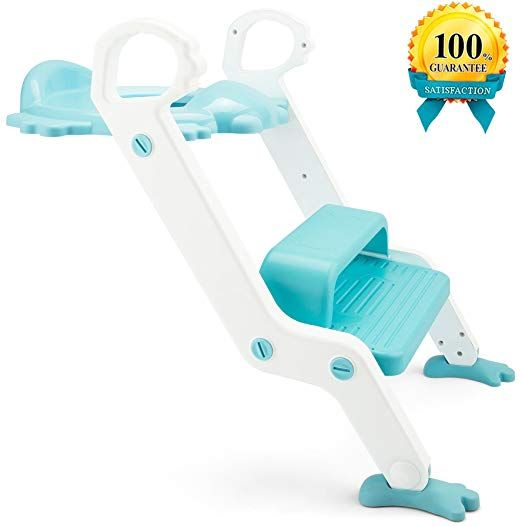 Cool Potty Training Seat With Step Stool Ladder For Kids And Creativecarmelina Interior Chair Design Creativecarmelinacom