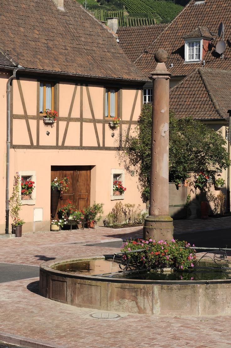 Fontaine et maisons à colombage à #Ammerschwihr