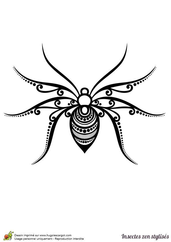 Les 25 meilleures id es de la cat gorie dessin araign e sur pinterest dessin de la nature - Araignee dessin ...