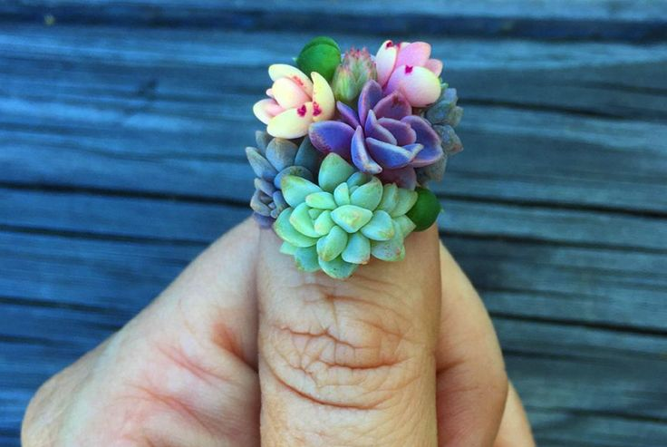 Succulent Nails Are The Second Most Insane Thing To Happen This Week