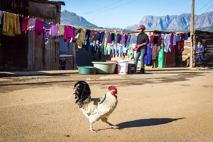 Visiting the Kayamandi township, Stellenbosch, South Africa
