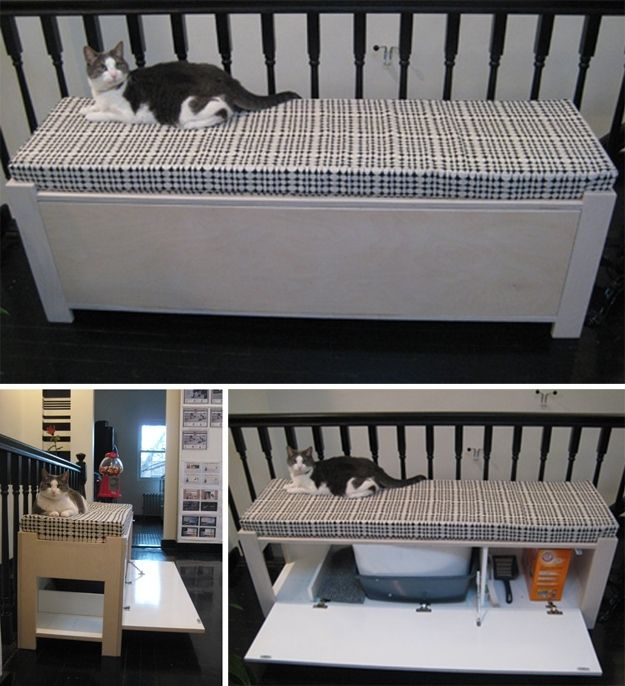 http://foter.com/explore/cat-litter-box-bench Idea: Put our bench on the 2nd floor near planter shelf and put cat's stuff inside it
