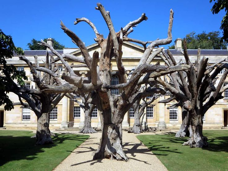 The Heong Gallery at Downing College in Cambridge, England, exhibited a group of artificial trees by Chinese sculptor Ai Weiwei in front of one of the college's Greek revival buildings.