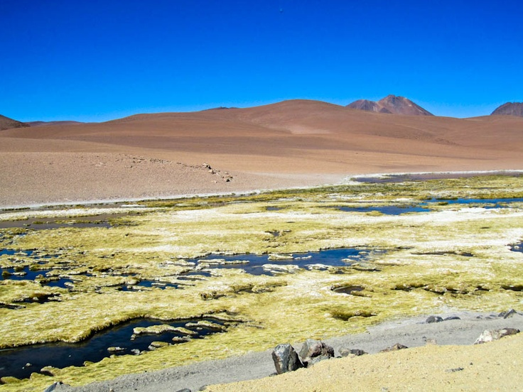 The Atacama Desert is such a unique place in the world. To actually think that I didn't know much about the desert until I started living in Chile is beyond me. This picture is of the Salar de Tara (Tara Salt Flat) in the Atacama Desert. The tour has to be done by 4×4 and the Salar de Tara is the last thing you see on the tour. It was very impressive to see all of the unique rock formations and landscapes scattered throughout the Atacama Desert.