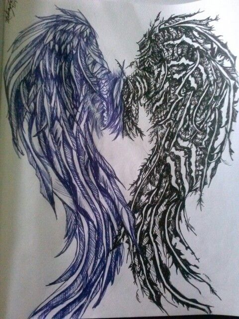 Angel wing, and fallen angel wing