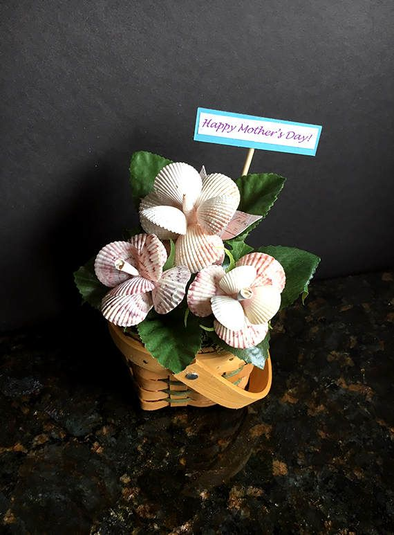 Sea Shell Flower Arrangement - 3 unique, life-like sea shell flowers in a basket surrounded by greenery